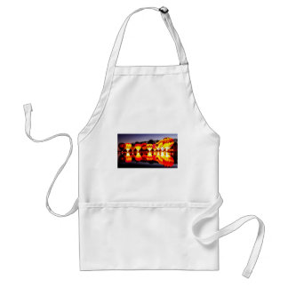 Reflections of Hot Air Balloons Adult Apron