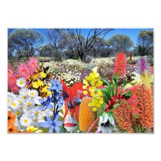 REFLECTIONS OF OZ australian wildflowers Photo Print
