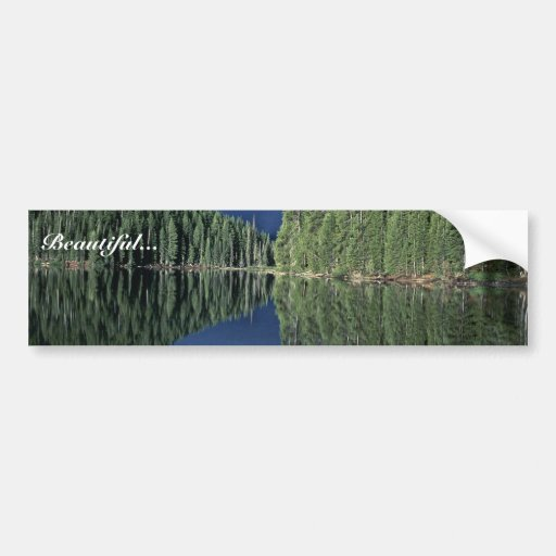 Reflections on a Lake Car Bumper Sticker