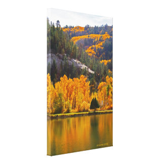 Reflections on Autumn in Dolores Stretched Canvas Print