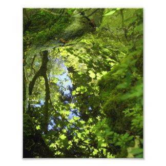 Reflections Photo Art