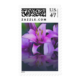 Reflections Postage