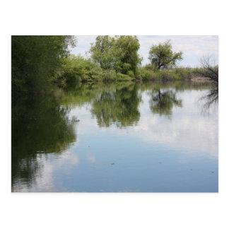 Reflections Postcard