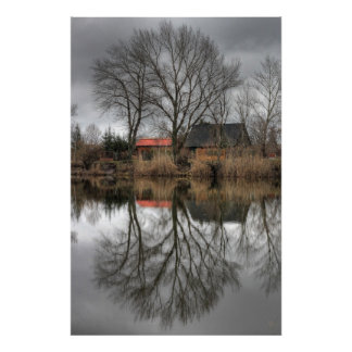 Reflections Print