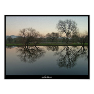 Reflections - Sonoma, CA Poster