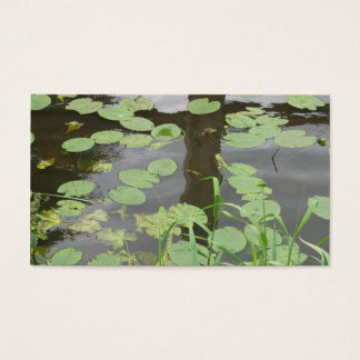 Reflections Water Lilypads Nature Photo Card