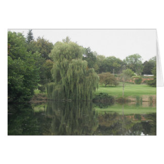 Reflections-Weeping Willow - Blank Card