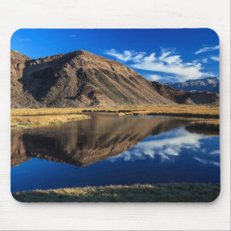 Reflective Isolation Mouse Pads