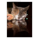 Reflective Kitty Greeting Cards