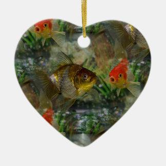 Reflejo de lujo del Goldfish