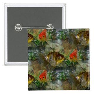 Reflejo de lujo del Goldfish Chapa Cuadrada 5 Cm