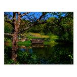 Reflexión a través de la postal del lago