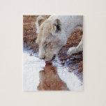 Reflexión blanca africana del león rompecabezas con fotos