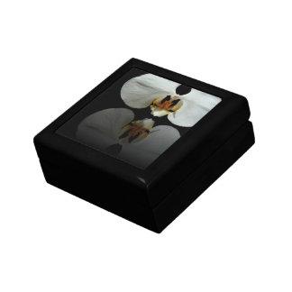 Reflexión blanca caja de joyas