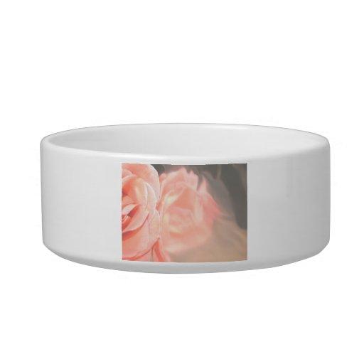 Reflexión color de rosa rosa clara en plata tazones para comida para gato