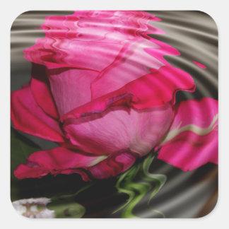 Reflexión color de rosa rosada descolorada pegatina cuadrada