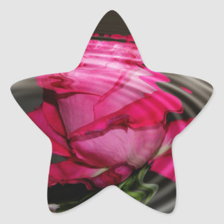Reflexión color de rosa rosada descolorada pegatina en forma de estrella