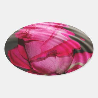 Reflexión color de rosa rosada descolorada pegatina ovalada