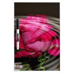 Reflexión color de rosa rosada descolorada pizarras