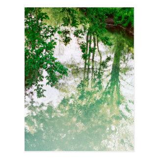 Reflexión de árboles tarjeta postal