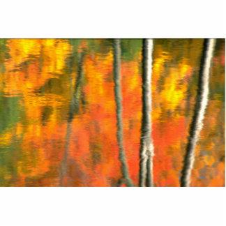 Reflexión de árboles y del follaje muertos del oto fotoescultura vertical