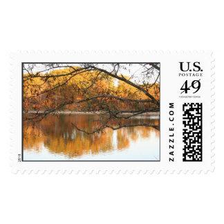 Reflexión de la caída timbres postales