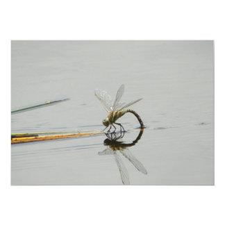 """Reflexión de la libélula invitación 5"""" x 7"""""""