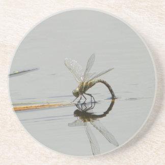 Reflexión de la libélula posavasos cerveza