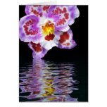 Reflexión de la orquídea tarjeton