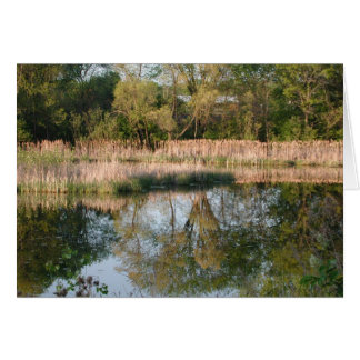 Reflexión de la primavera tarjeta de felicitación
