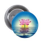 Reflexión de Lotus Pins