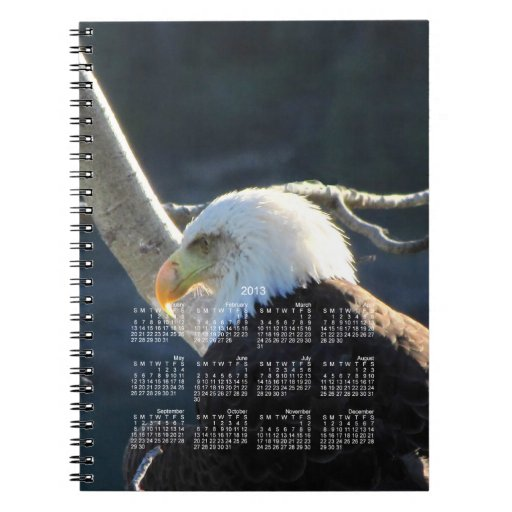 Reflexión del BEC Eagle calvo Cuaderno