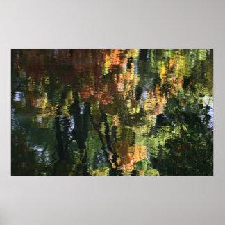 Reflexión del bosque en poster del agua