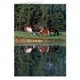 Reflexión del caballo felicitación