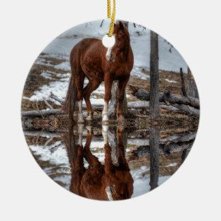 Reflexión del caballo y de la charca del rancho de adorno navideño redondo de cerámica