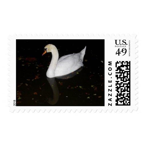 Reflexión del cisne sello postal
