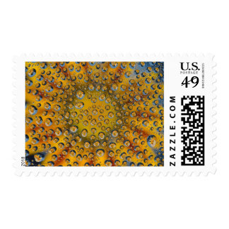 Reflexión del descenso de rocío de la flor, ciudad sellos