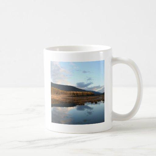 Reflexión del lago tree de la puesta del sol taza de café