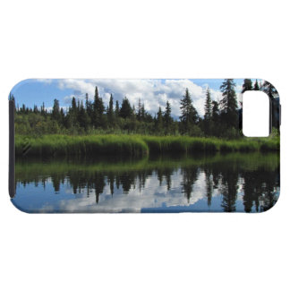 Reflexión del río de Lapie iPhone 5 Carcasas