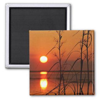Reflexión del sol de la tarde imanes de nevera