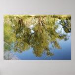 Reflexión en el agua poster