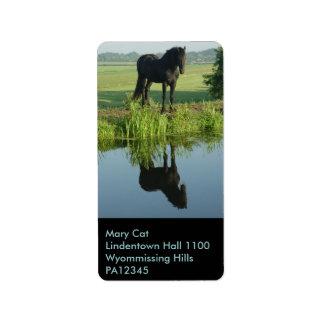 Reflexión frisia del caballo en agua etiquetas de dirección