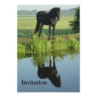 """Reflexión frisia del caballo en agua invitación 5"""" x 7"""""""