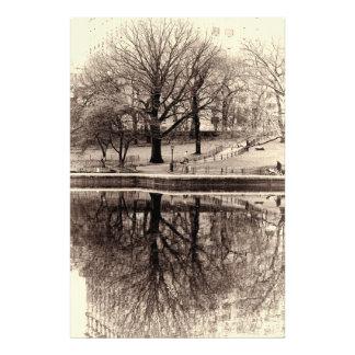 Reflexión hermosa del árbol fotografias