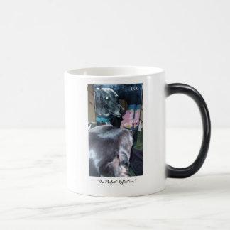 Reflexión perfecta - dios perro taza
