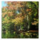 Reflexión preciosa del otoño azulejo ceramica