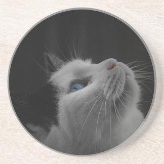 Reflexione el práctico de costa del gato posavaso para bebida