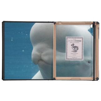 Reflexiones de la ballena iPad cobertura