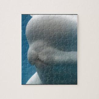 Reflexiones de la ballena rompecabeza