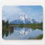 Reflexiones de la montaña de Teton Tapetes De Raton